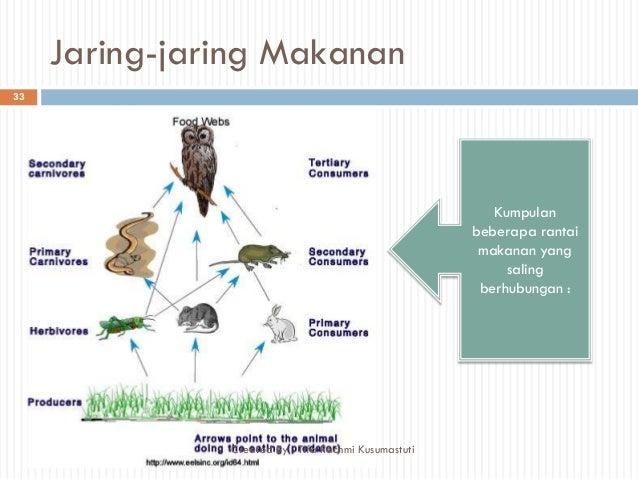 Ppt ekosistem kelas 7