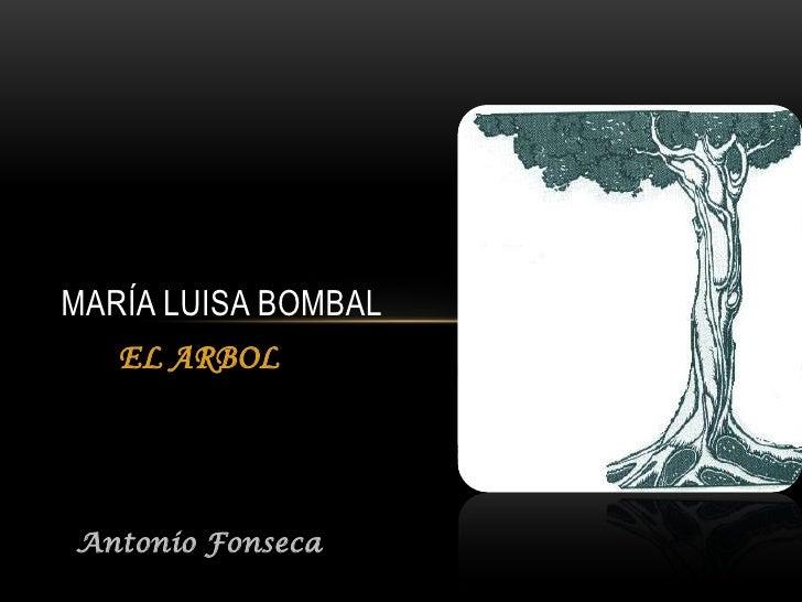 MARÍA LUISA BOMBAL   EL ARBOLAntonio Fonseca