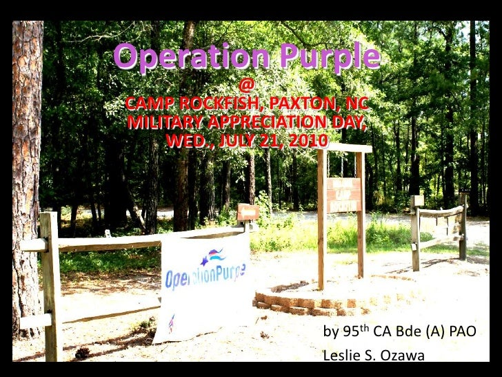 Operation Purple@ CAMP ROCKFISH, PAXTON, NCMILITARY APPRECIATION DAY,WED., JULY 21, 2010<br />by 95th CA Bde (A) PAO<br />...