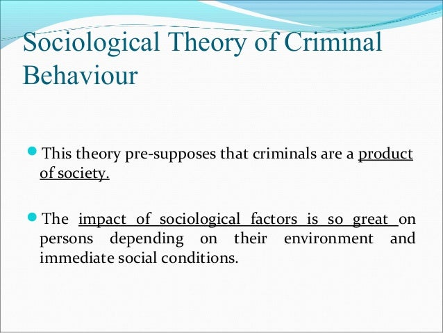 notes from criminal behavior socialogical theories Introduction to criminology: theories, methods, and criminal behavior [frank e  hagan] on  sociology of organizations: structures and relationships.