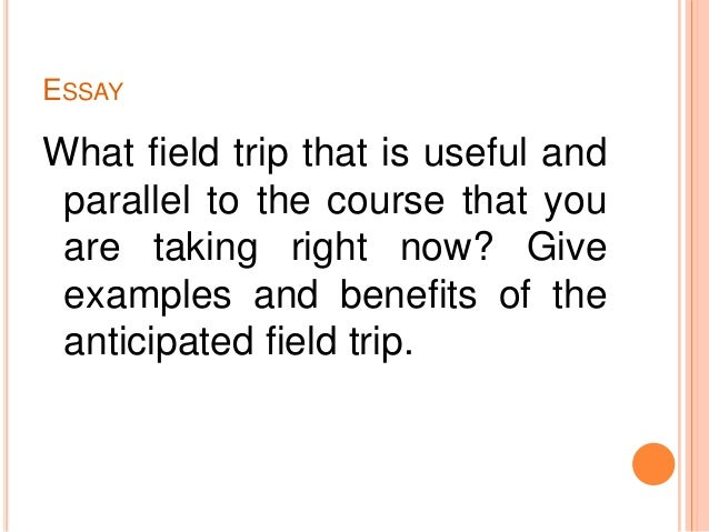 making the most of community service and field trips essay what field trip