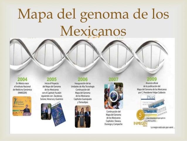 Ppt genoma humano for En 2003 se completo la secuenciacion del humano