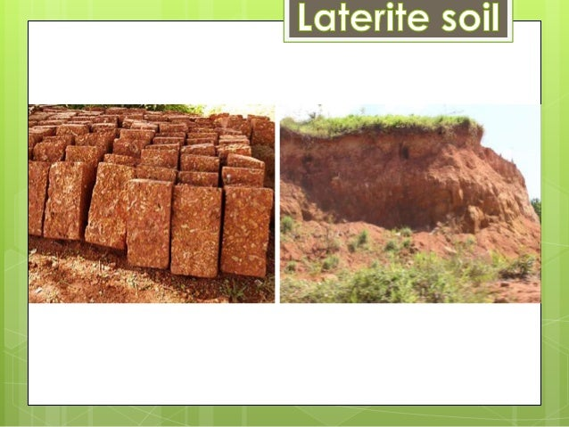 Types of soil for What does soil contain