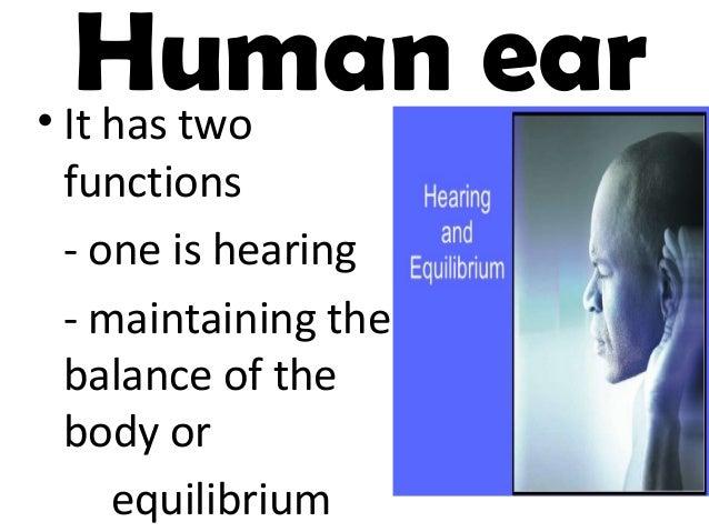 ppt gr 3 ears