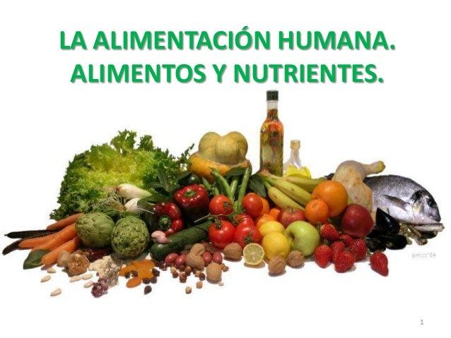 LA ALIMENTACIÓN HUMANA. ALIMENTOS Y NUTRIENTES.                           1