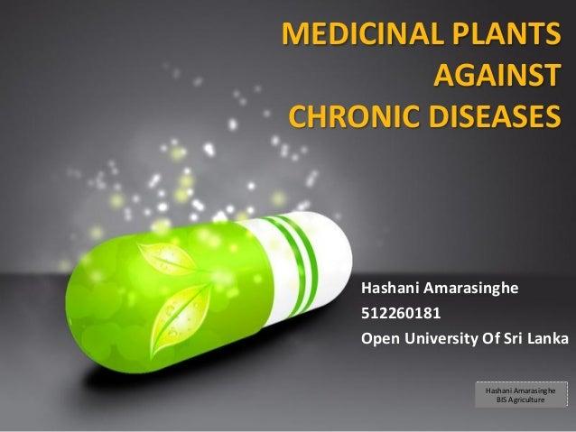 Your Logo MEDICINAL PLANTS AGAINST CHRONIC DISEASES Hashani Amarasinghe 512260181 Open University Of Sri Lanka Hashani Ama...