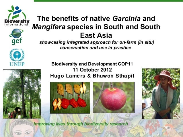 The benefits of native Garcinia and Mangifera species in South and South East Asia showcasing integrated approach for on-f...