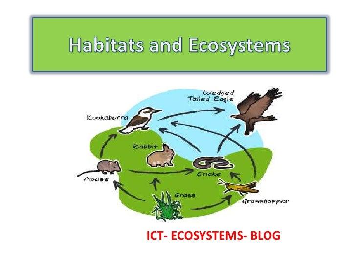 ICT- ECOSYSTEMS- BLOG