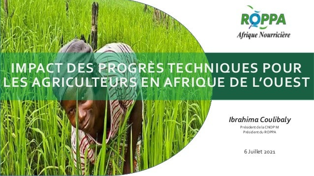 IMPACT DES PROGRÈS TECHNIQUES POUR LES AGRICULTEURS EN AFRIQUE DE L'OUEST Ibrahima Coulibaly Président de la CNOP M Présid...