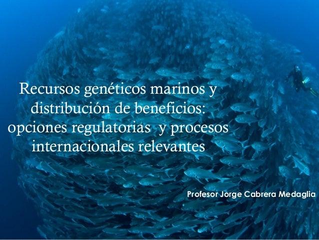  Recursos genéticos marinos y distribución de beneficios: opciones regulatorias y procesos internacionales relevantes Pro...