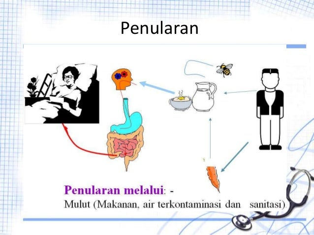 Demam Typhoid Disentri Difteri