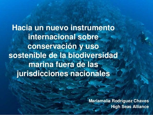 S Hacia un nuevo instrumento internacional sobre conservación y uso sostenible de la biodiversidad marina fuera de las jur...