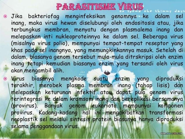  1. SIKLUS LITIK  2. SIKLUS LISOGENIK Siklus lisogenik dalam virologi merupakan siklus reproduksi virus selain siklus li...