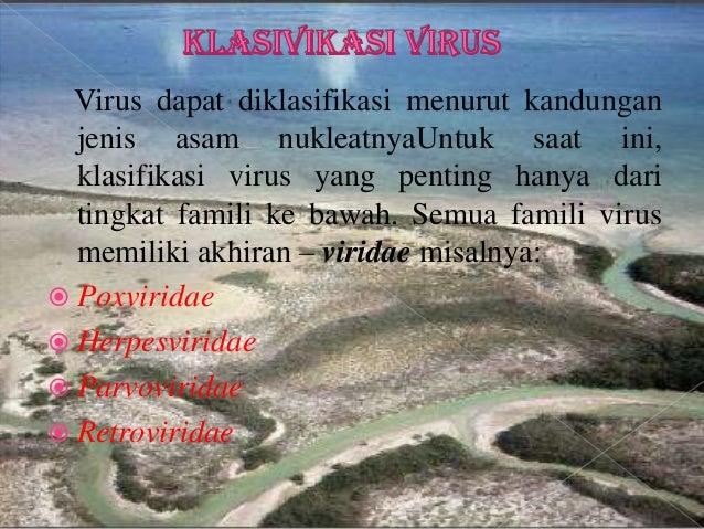 HIV (Human Immunodeficiency Virus) Virus influenza