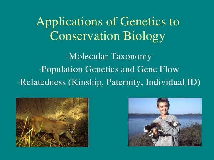 Applications of Genetics to Conservation Biology -Molecular Taxonomy -Population Genetics and Gene Flow -Relatedness (Kins...