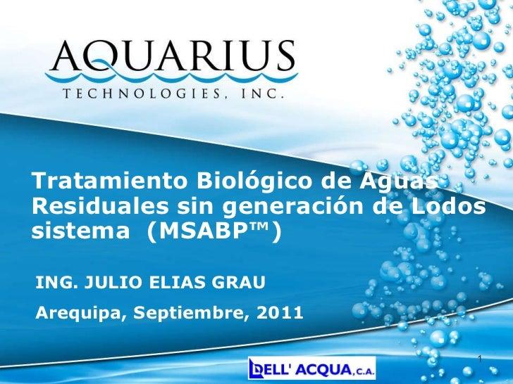 Tratamiento Biológico de Aguas Residuales sin generación de Lodos sistema  (MSABP™) ING. JULIO ELIAS GRAU Arequipa, Septie...