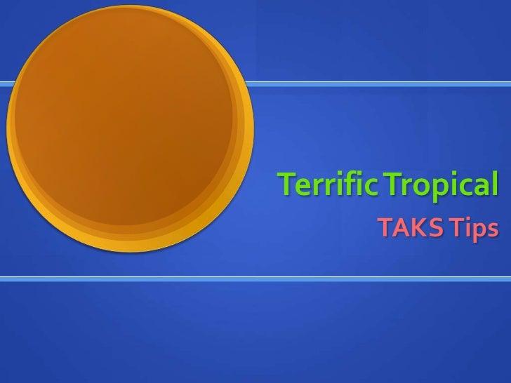 Terrific Tropical<br />TAKS Tips<br />