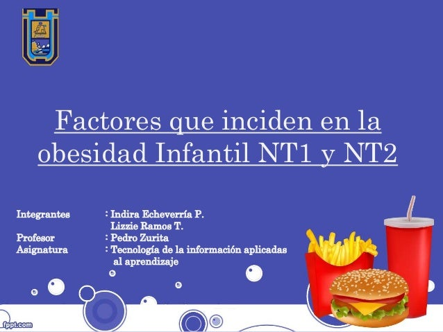 Factores que inciden en la obesidad Infantil NT1 y NT2 Integrantes : Indira Echeverría P. Lizzie Ramos T. Profesor : Pedro...