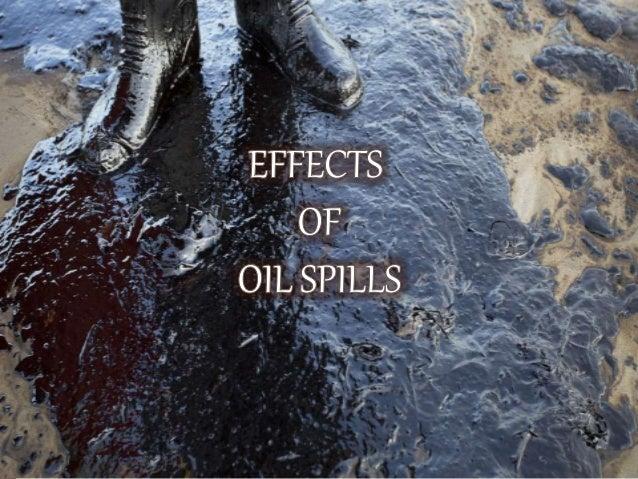 Ppt oil spill Slide 3