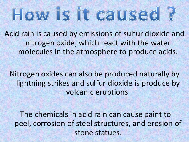 acid rain essay in english Use our custom writing services or get access to database of 18 free essays samples about analysis of acid rain analysis of acid rain essay old english.