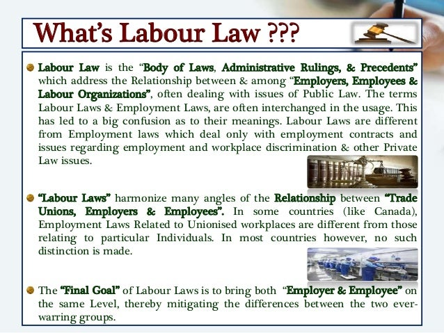 labor laws essay
