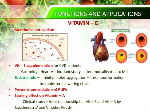 vitamine k2 cholesterol