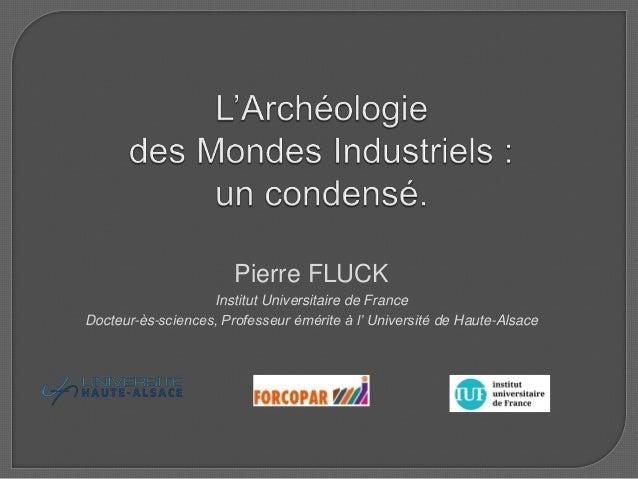 Pierre FLUCK Institut Universitaire de France Docteur-ès-sciences, Professeur émérite à l' Université de Haute-Alsace
