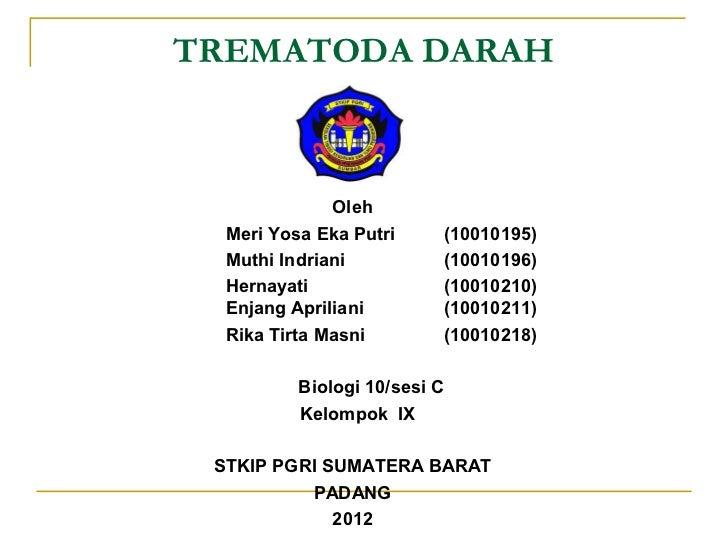 TREMATODA DARAH              Oleh  Meri Yosa Eka Putri         (10010195)  Muthi Indriani              (10010196)  Hernaya...