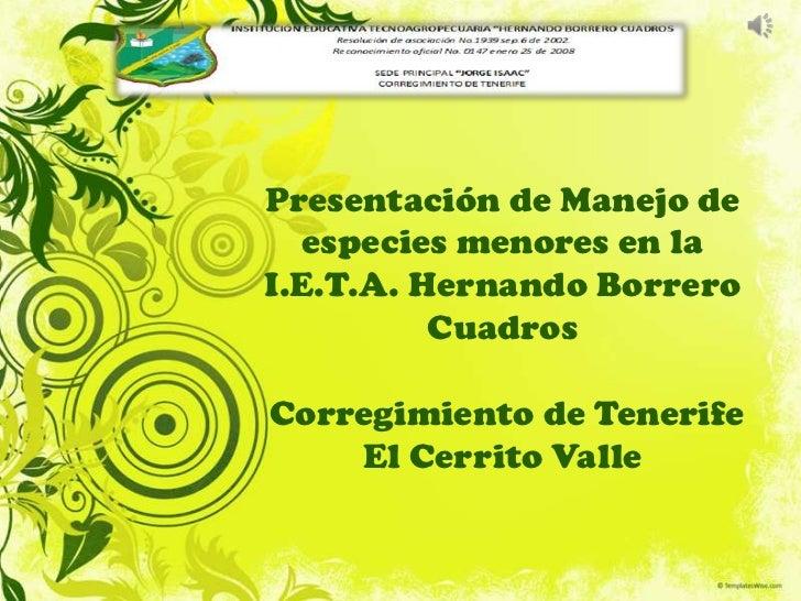 Presentación de Manejo de  especies menores en laI.E.T.A. Hernando Borrero          CuadrosCorregimiento de Tenerife    El...