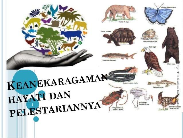 1 CreatedBy:TifaRachmiKusumastuti