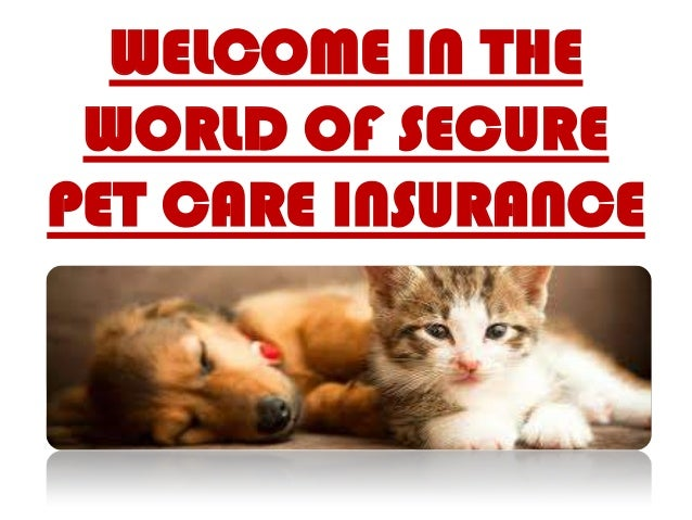 WELCOME IN THE WORLD OF SECURE PET CARE INSURANCE