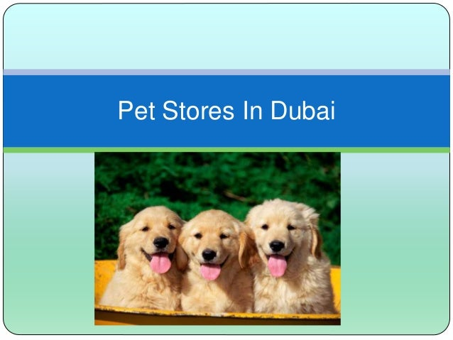 Pet Stores In Dubai