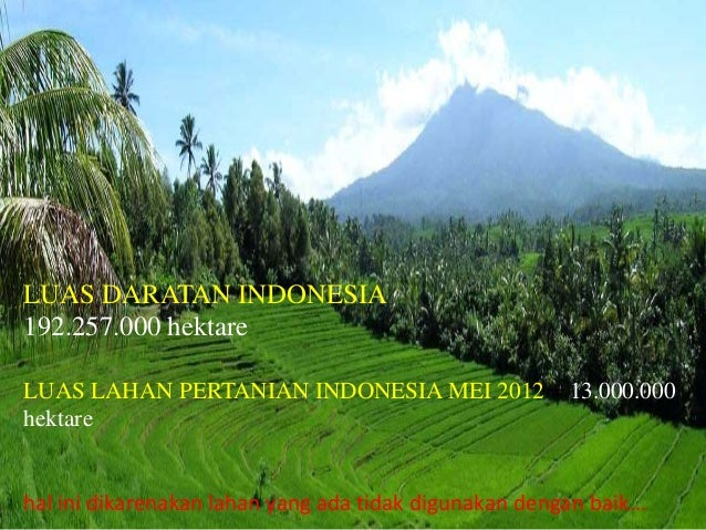 Revitalisasi Dan Industrialisasi Pada Sektor Pertanian Di Indonesia