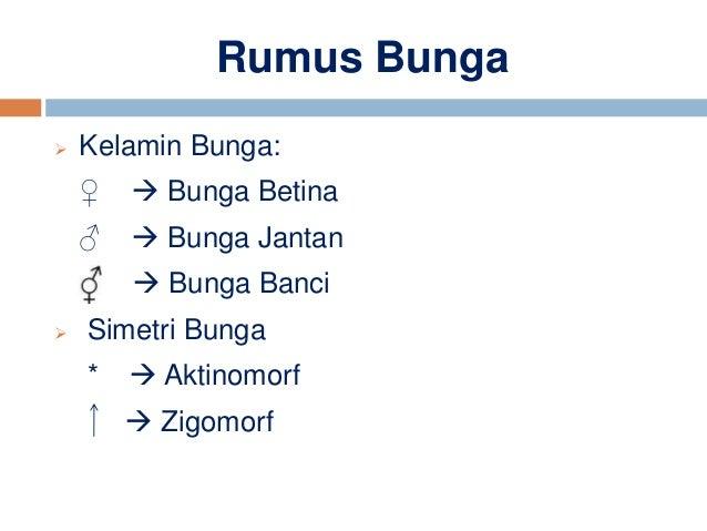 Ppt Poltekes Diagram Dan Rumus Bunga