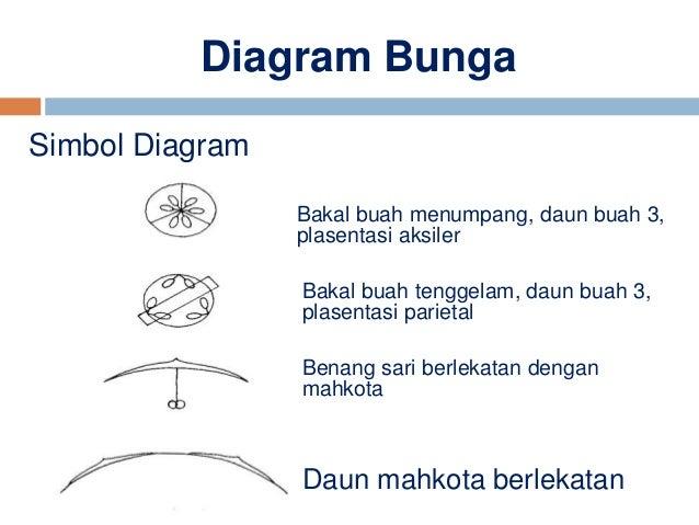 Ppt poltekes diagram dan rumus bunga diagram ccuart Image collections