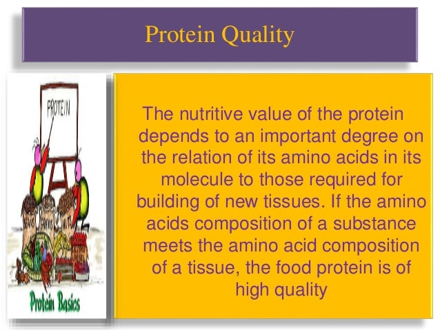 High Quality Protein Food Sources
