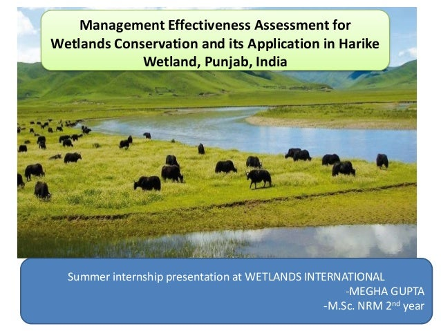 an analysis of the issue of wetland conservation and policy The initiative addresses the need to enhance conservation of coastal wetlands  can be found in coastal wetlands analysis:  on wetlands policy,.