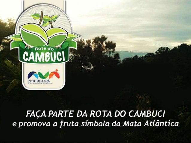 FAÇA PARTE DA ROTA DO CAMBUCI e promova a fruta símbolo da Mata Atlântica