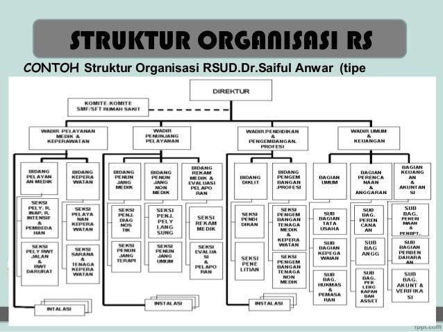 Struktur Organisasi Rumah Sakit Tipe D Pratama