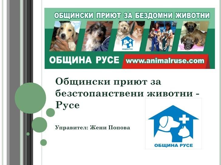 Общински приют забезстопанствени животни -РусеУправител: Жени Попова