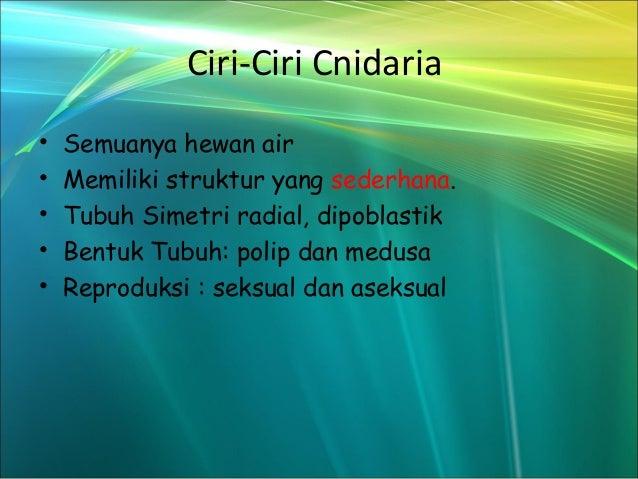 Filum cnidaria ppt to pdf