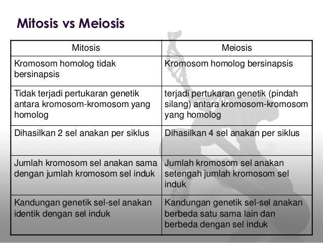 Perbedaan Pembelahan Sel Mitosis Dan Meiosis Dalam Bentuk Tabel Berbagi Bentuk Penting