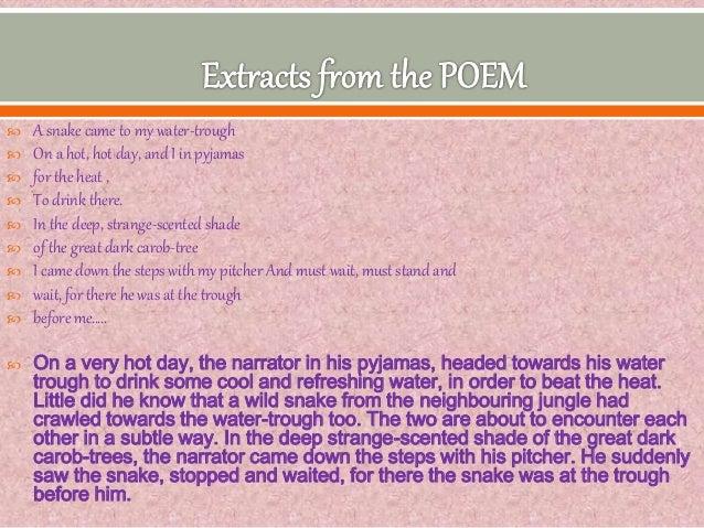 snake d h lawrence essays