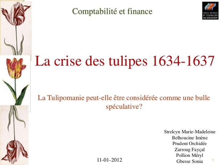 tulipe hollande crise