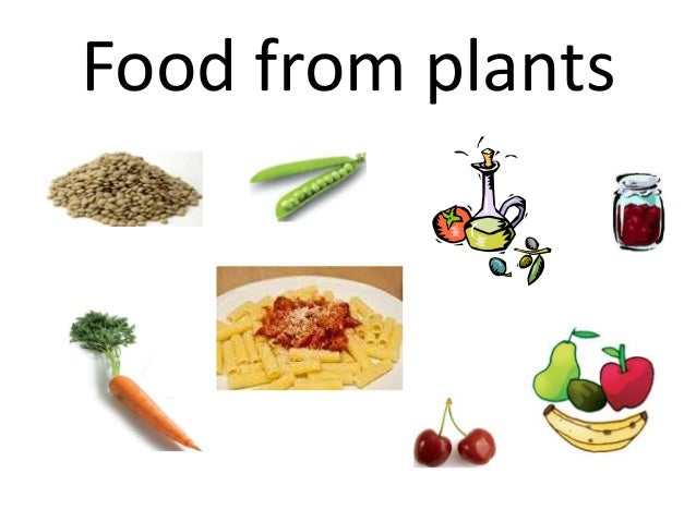 Healthy Types Of Food To Eat