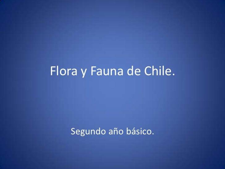 Flora y Fauna de Chile.   Segundo año básico.