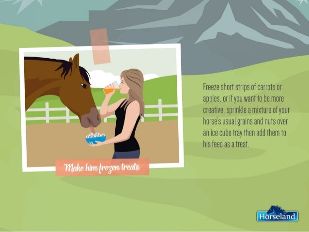 Beat the Heat - Keeping Your Horse Cool This Summer