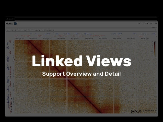 Linked Views Support Overview and Detail