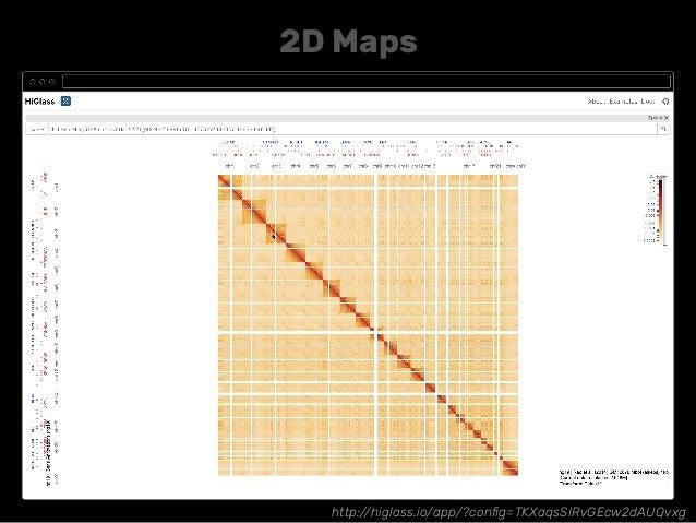 http://higlass.io/app/?config=TKXaqsSIRvGEcw2dAUQvxg 2D Maps