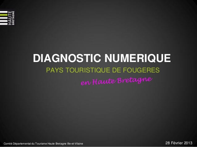 DIAGNOSTIC NUMERIQUE                                 PAYS TOURISTIQUE DE FOUGERESComité Départemental du Tourisme Haute Br...